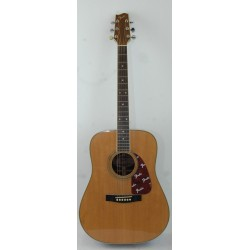 Fender F250 Natural Chitarra Folk