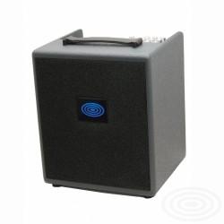 Schertler David Deluxe Combo Amplificatore Chitarra Acustica