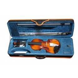 Domus Allievo 2 VL4200 4/4 Violino