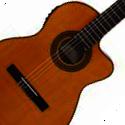 Chitarre classiche elettrificate